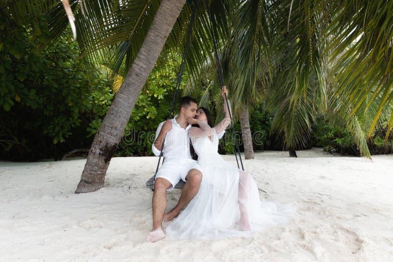 Os recém-casados beijam em um balanço sob uma palmeira grande fotos de stock royalty free
