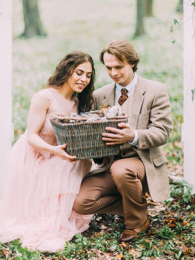 Os recém-casados de sorriso são squating e guardando a caixa tecida com doninhas pequenas para dentro A composição da floresta imagem de stock