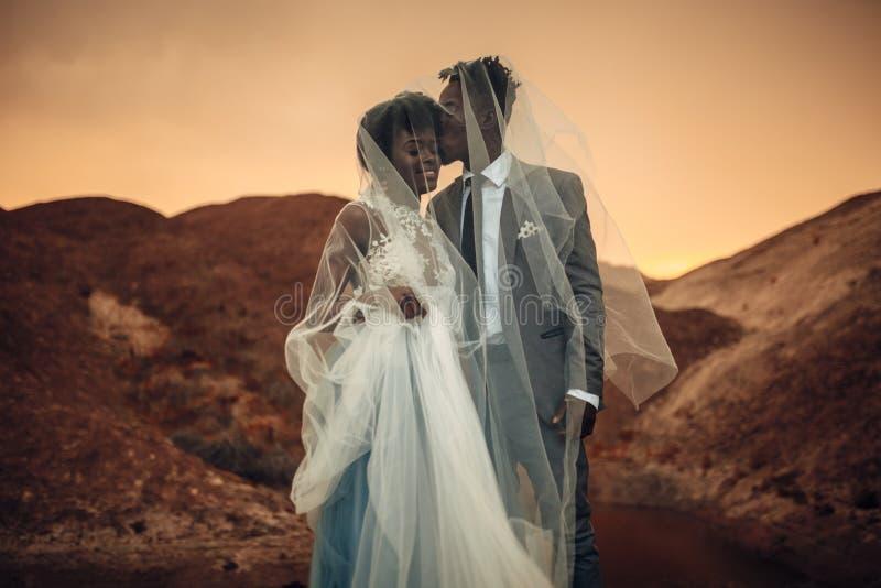 Os recém-casados estão sob o véu nupcial, sorriem e beijam na garganta no por do sol imagens de stock