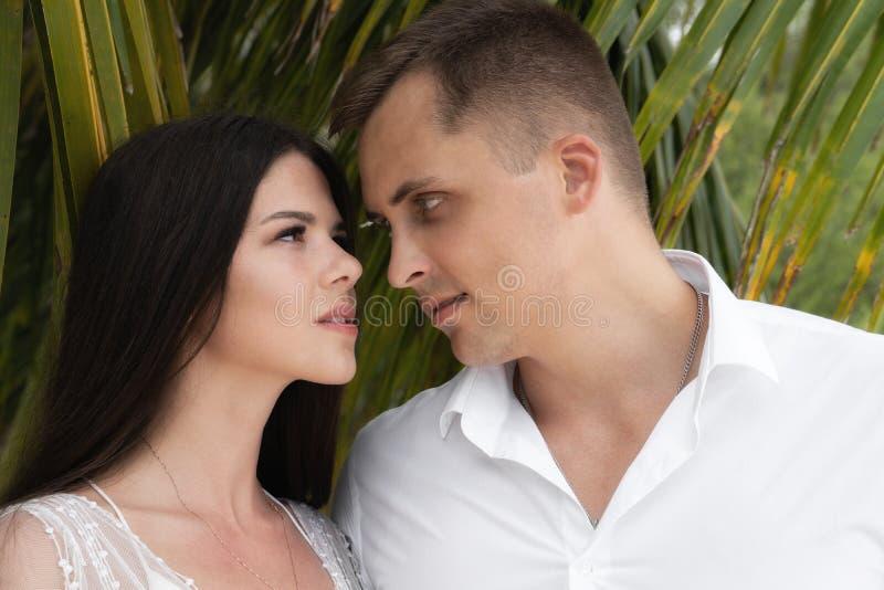 Os recém-casados perfuram olhares de cada um Um par está estando sob as folhas de uma palmeira fotos de stock