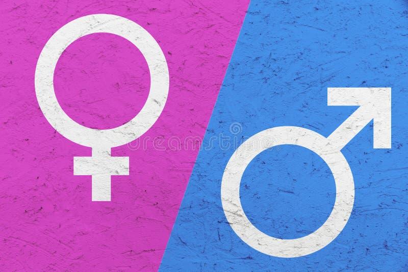 Os símbolos masculinos e fêmeas Marte do gênero e o Vênus assinam sobre o rosa e o fundo desigual azul da textura fotos de stock royalty free