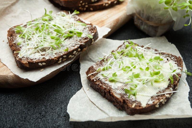 Os sanduíches frescos do vegetariano com microgreen no papel de pergaminho fotos de stock
