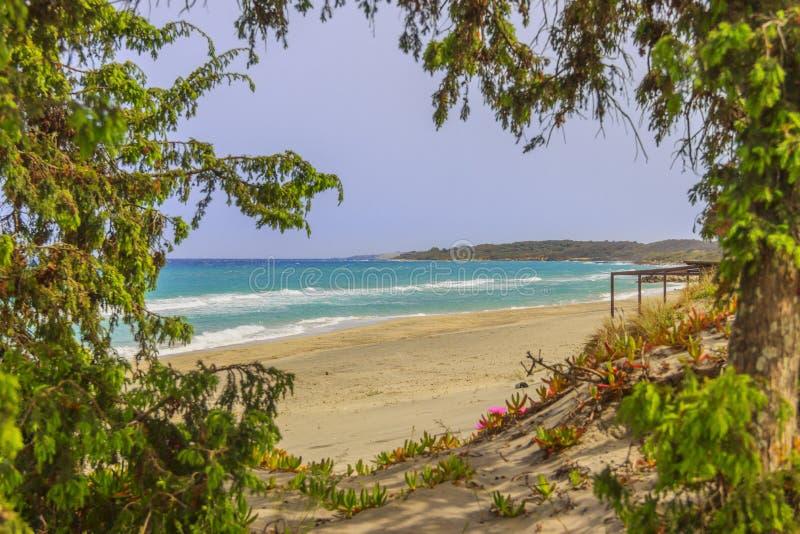 Os Sandy Beach os mais bonitos de Apulia Costa de Salento: Praia de Alimini, ITÁLIA Lecce fotografia de stock