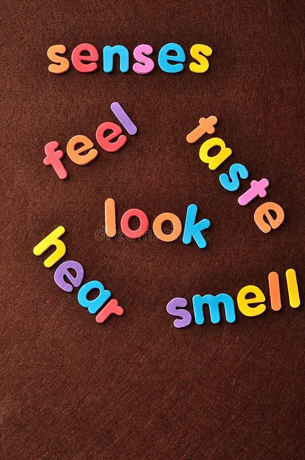 Os sentidos de palavras, sensação, gosto, olhar, ouvem-se e cheiram-se fotografia de stock royalty free