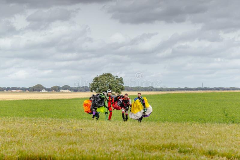 Os Skydivers levam um paraquedas após a aterrissagem imagens de stock
