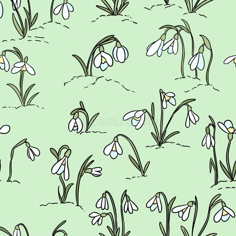 Os snowdrops bonitos florescem o teste padr?o sem emenda Come?o da mola ilustração royalty free
