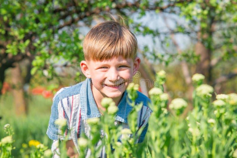 Os sorrisos e os risos do menino sob o sol da mola no fundo dos arbustos e das ?rvores foto de stock