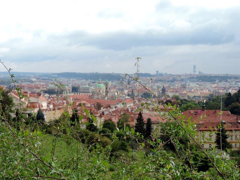 Os telhados do vermelho de Praga fotos de stock