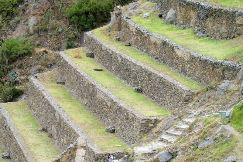Os terraços arqueológicos do Inca antigo arruinam Ollantaytambo perto de Cusco, Peru foto de stock royalty free