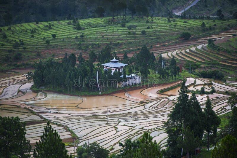 Os terraços cercam um templo escondido, Goemba, Butão foto de stock royalty free