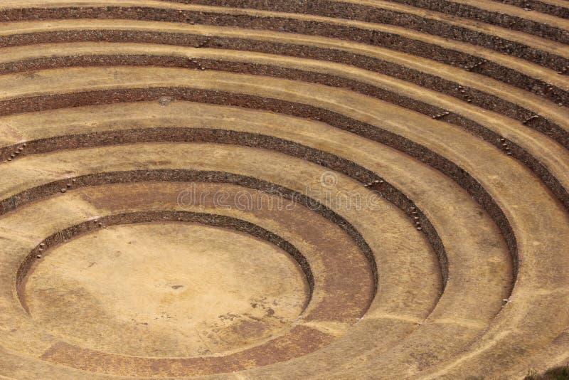 Os terraços circulares no Moray foto de stock royalty free