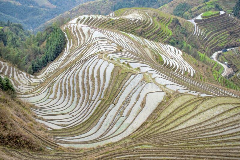 Os terraços do arroz de Longsheng foto de stock royalty free