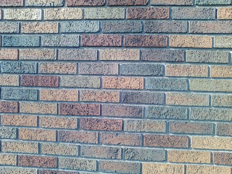 Os tijolos diferentes da cor nele são os melhores fotos de stock