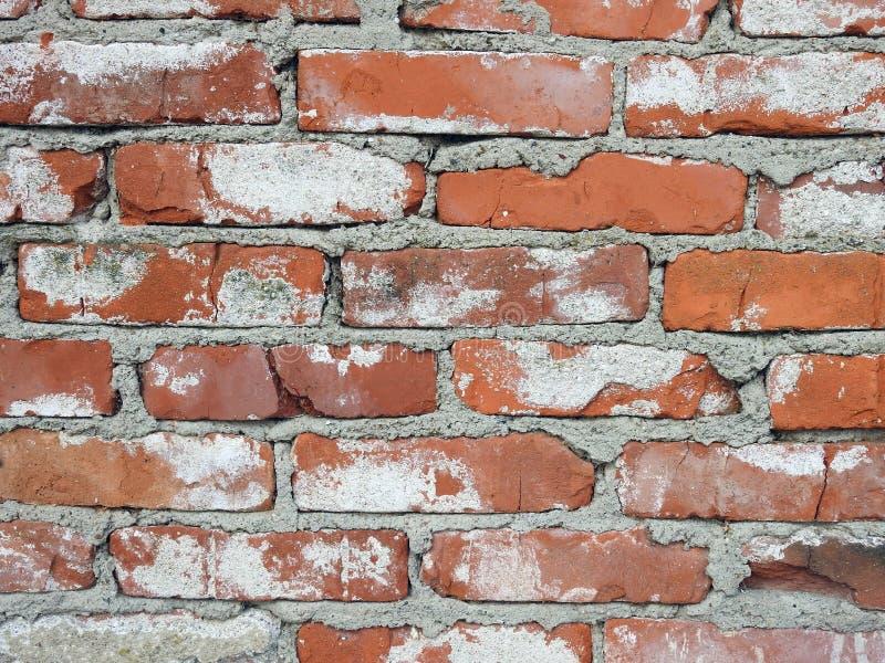 Os tijolos vermelhos velhos dirigem a parede, Lituânia foto de stock royalty free