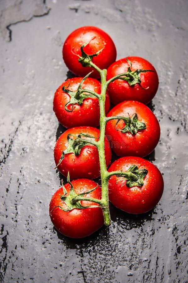 Os tomates ramificam com gotas da água no fundo escuro da ardósia fotografia de stock royalty free