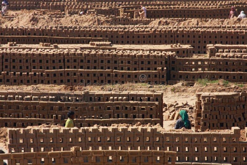 Os trabalhadores preparam tijolos em uma estufa de tijolo fotografia de stock