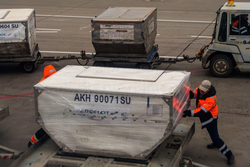 Os trabalhadores são empregados com carga da bagagem no plano no aeroporto fotografia de stock royalty free