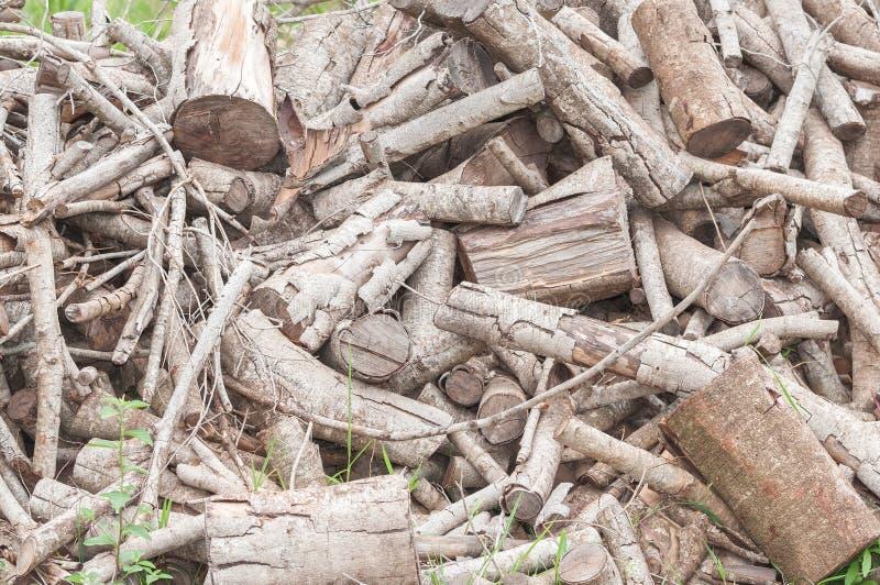 Os troncos de árvore cortaram em partes pequenas foto de stock royalty free