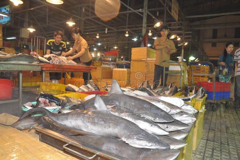 Os tubarões estão esperando comprar no mercado do marisco da noite da venda por atacado de Binh Dien, o mais grande na cidade de  imagem de stock