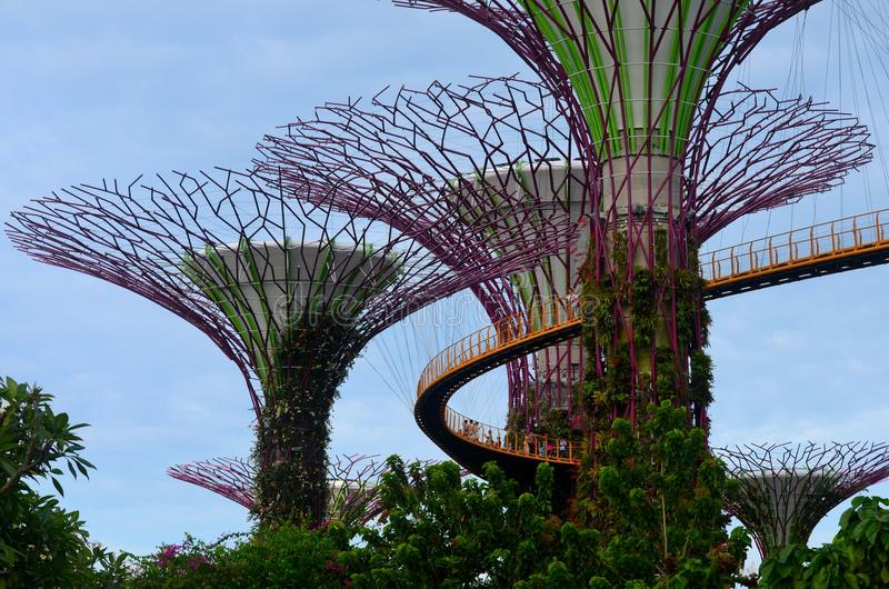 Os turistas andam em OCBC Skywalk entre Supertrees em jardins pela baía Singapura fotos de stock