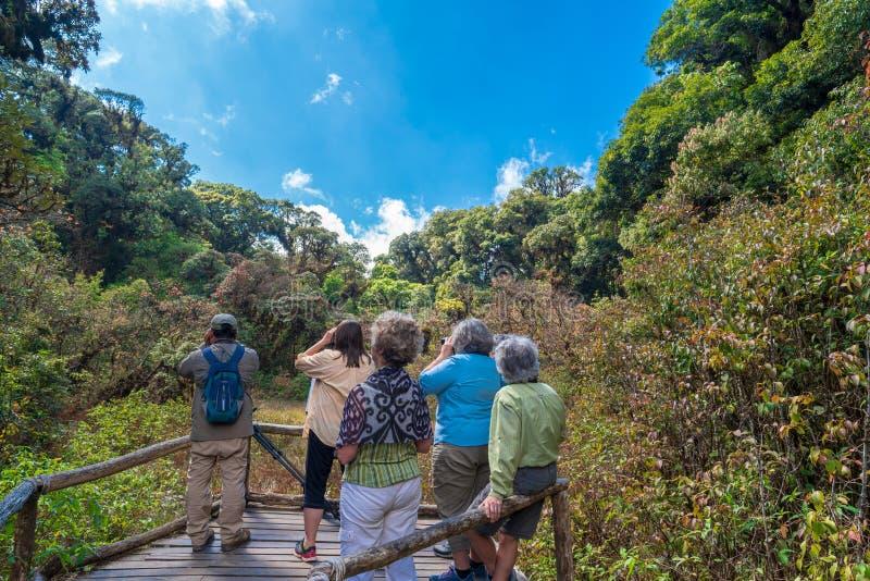 Os turistas birdwatching em Doi Inthanon, Chiang Mai imagens de stock