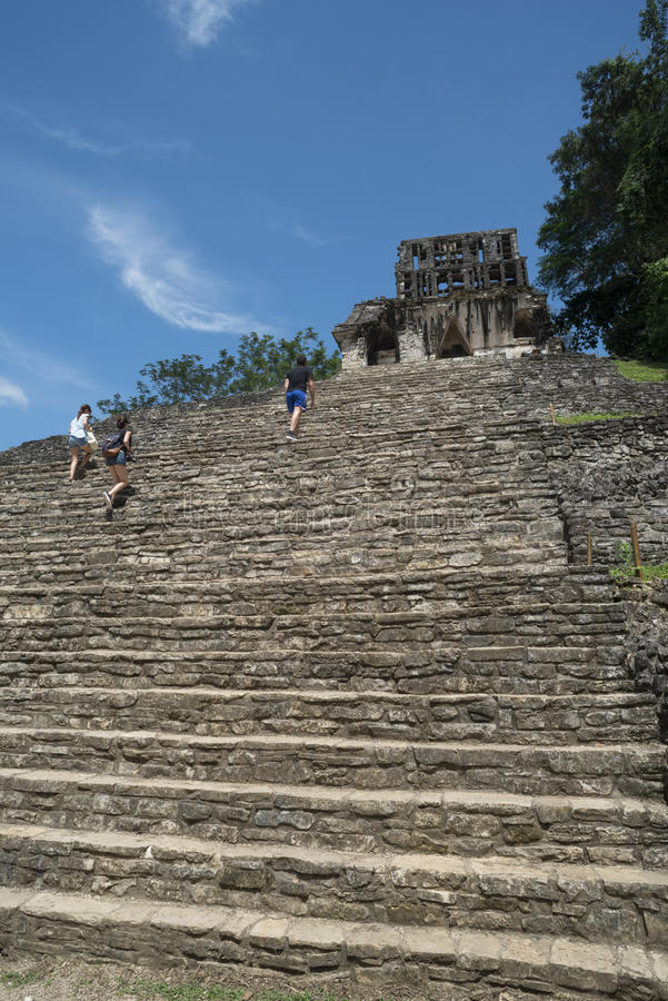 Os turistas escalam escadas no local de Palenque em México fotografia de stock royalty free