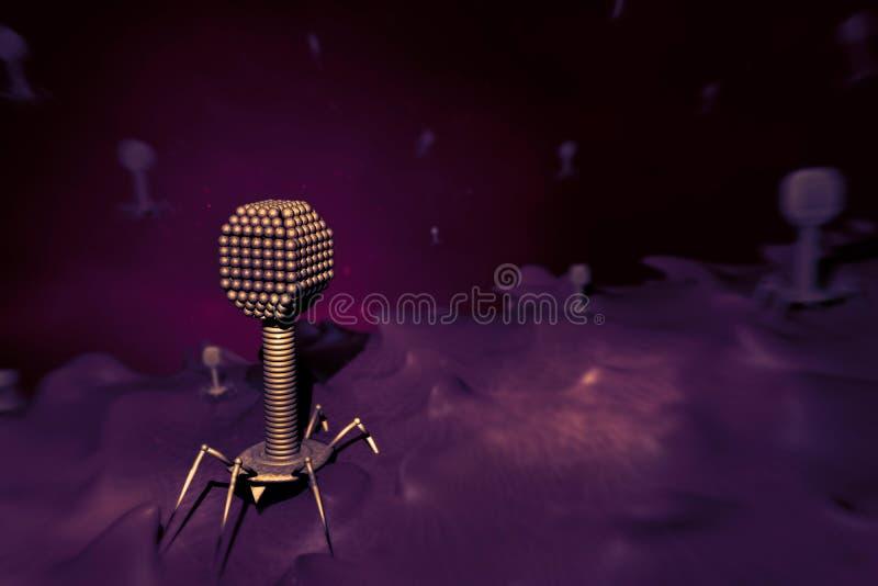 Os vírus do bacteriófago em um elétron da exploração da pilha das bactérias fazem a varredura fotos de stock royalty free