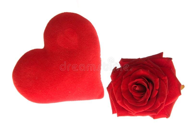Os Valentim levantaram-se foto de stock