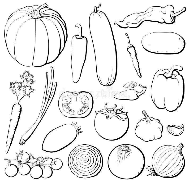 Os vegetais ajustaram o b&w ilustração do vetor