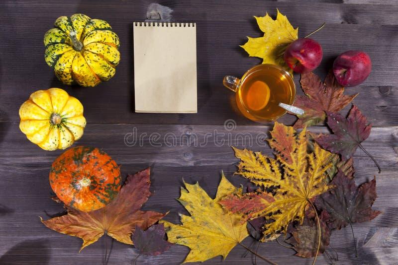 Os vegetais e as folhas outonais na madeira escura fotos de stock