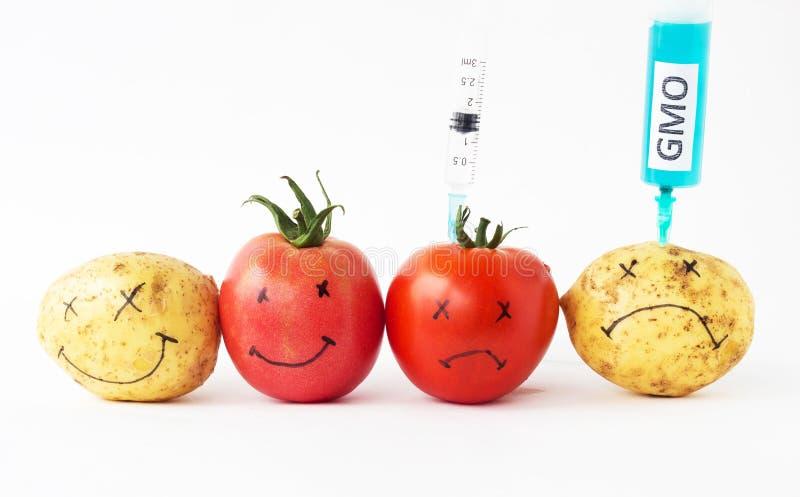 Os vegetais em batatas e em tomates de um fundo do branco com nitratos e gmo, seringa, close-up, alteraram genetically o organism fotografia de stock royalty free