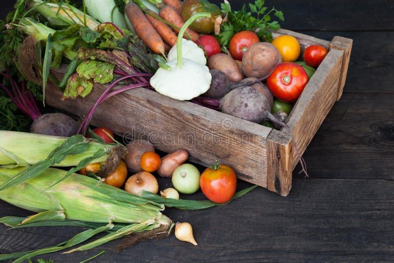 Os vegetais sazonais colhem, alimento fresco da dieta do outono Planta org?nica da desintoxica??o fotografia de stock