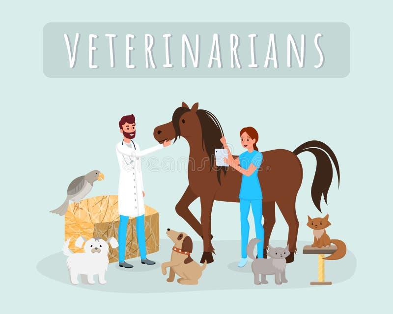 Os veterinários trabalham a ilustração lisa do vetor Veterinários masculinos, fêmeas, doutores que examinam o cavalo, personagens ilustração stock