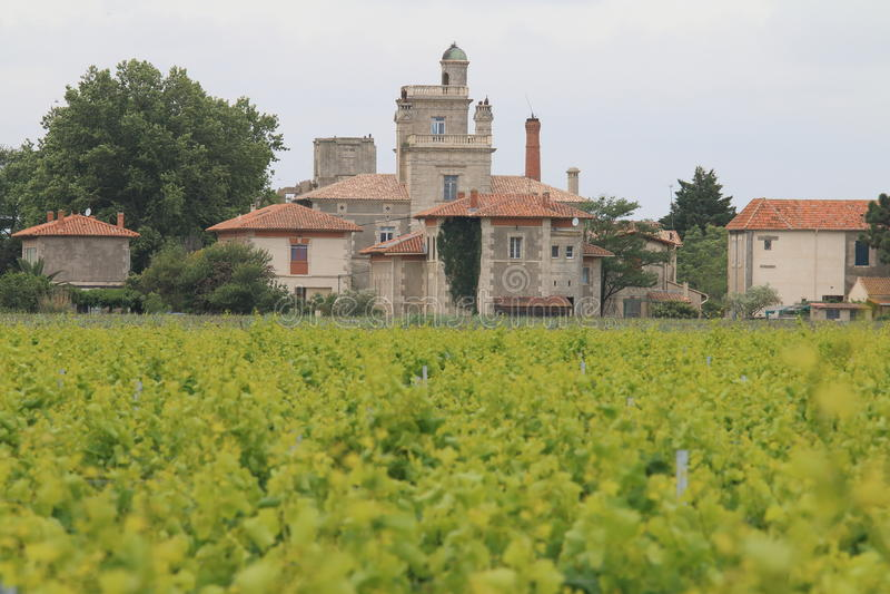 Os vinhedos aproximam a aldeola de Montcalm, Vauvert, França imagem de stock