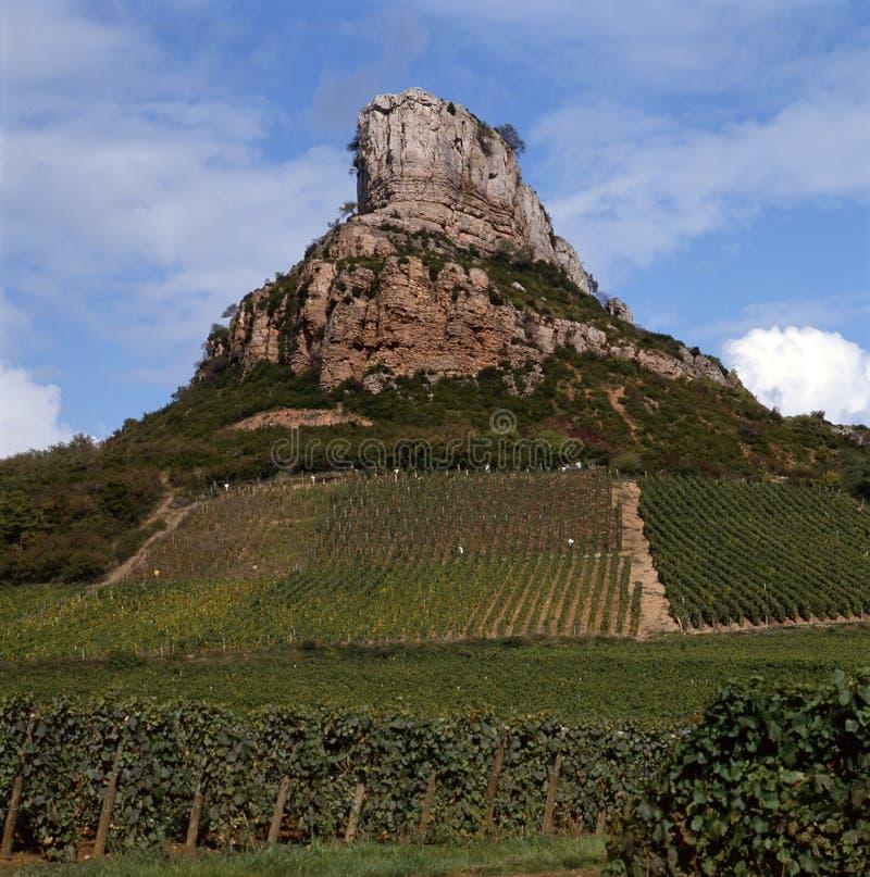 Os vinhedos de Solutre-Pouilly fotografia de stock