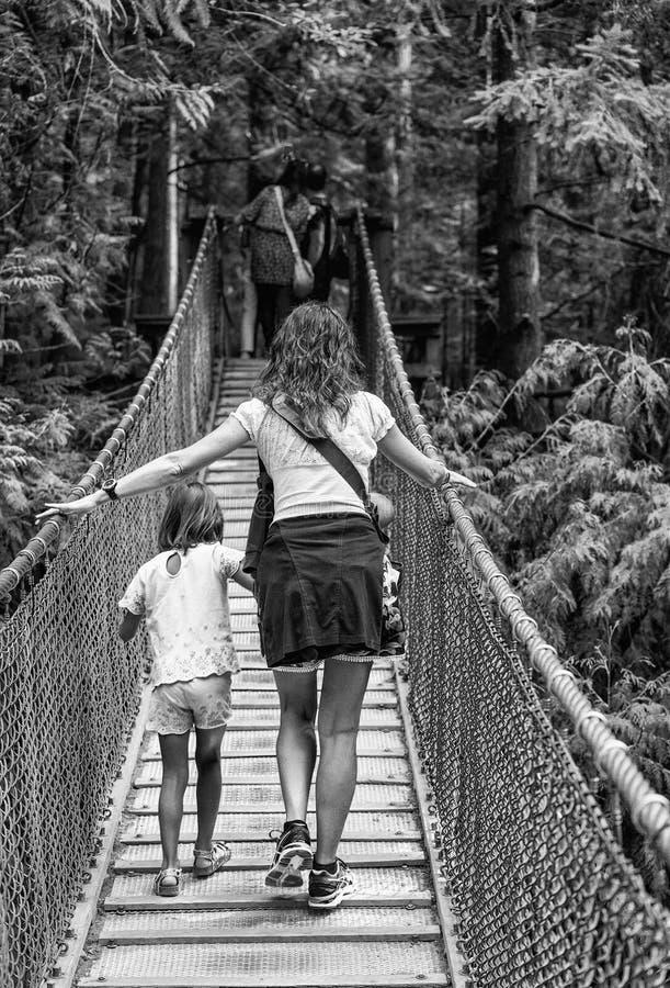 Os visitantes que exploram a ponte de suspensão de Capilano estacionam no norte imagem de stock royalty free