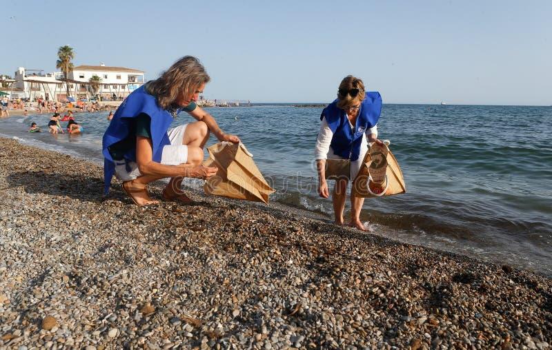 Os voluntários escolhem topos e plásticos do cigarro da praia fotos de stock royalty free
