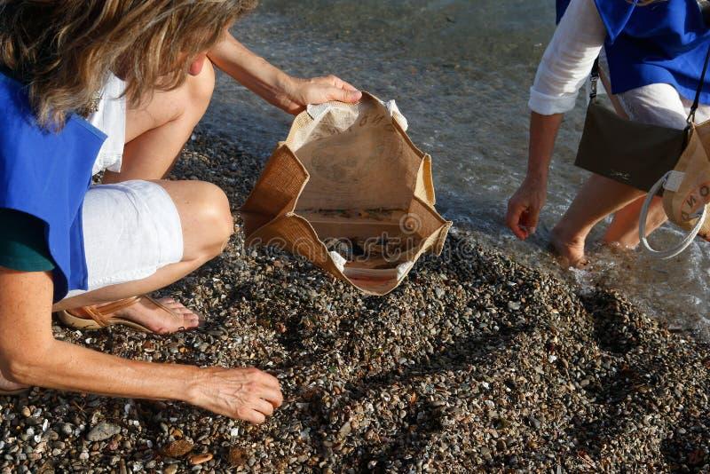 Os voluntários escolhem topos e plásticos do cigarro do detalhe da praia no saco com desperdícios fotos de stock