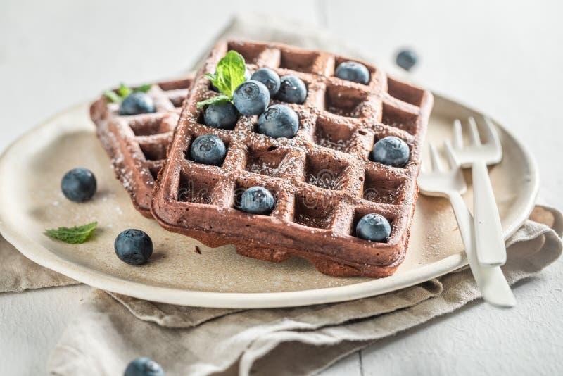 Os waffles frescos fizeram do cacau com frutos de baga imagem de stock royalty free