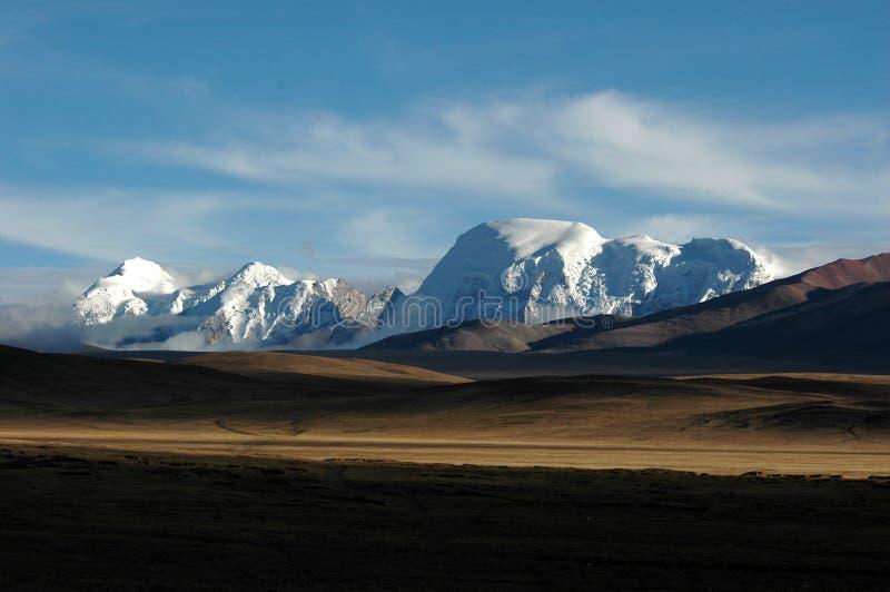 Os wildernss e as montanhas da neve foto de stock royalty free