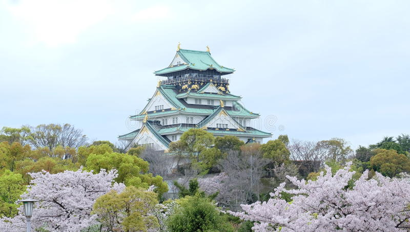 Osaka Castle & x28; 大阪城,  de ÅŒsakajÅ & x29; com sakura imagem de stock