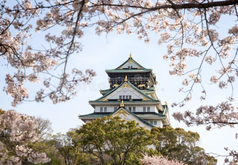 Osaka Castle in de lente met kersenbloesems in volledige bloei royalty-vrije stock foto