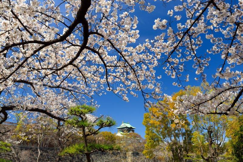 Osaka Castle en park stock foto's