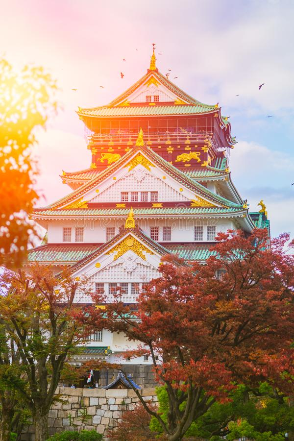 Osaka Castle im Sonnenlicht des blauen Himmels des Herbstrotahorns stockbild