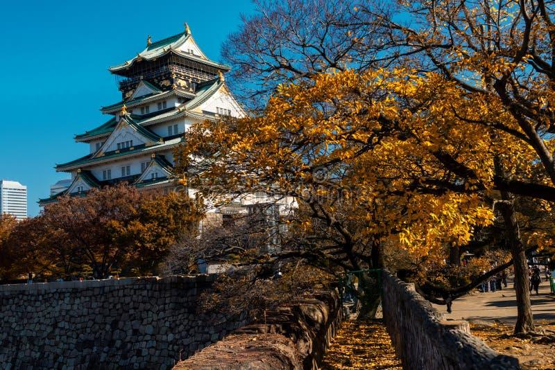 Osaka castle landmark in autumn. Osaka castle landmark in aun with yellow foliage trees in Kansai, Japan royalty free illustration