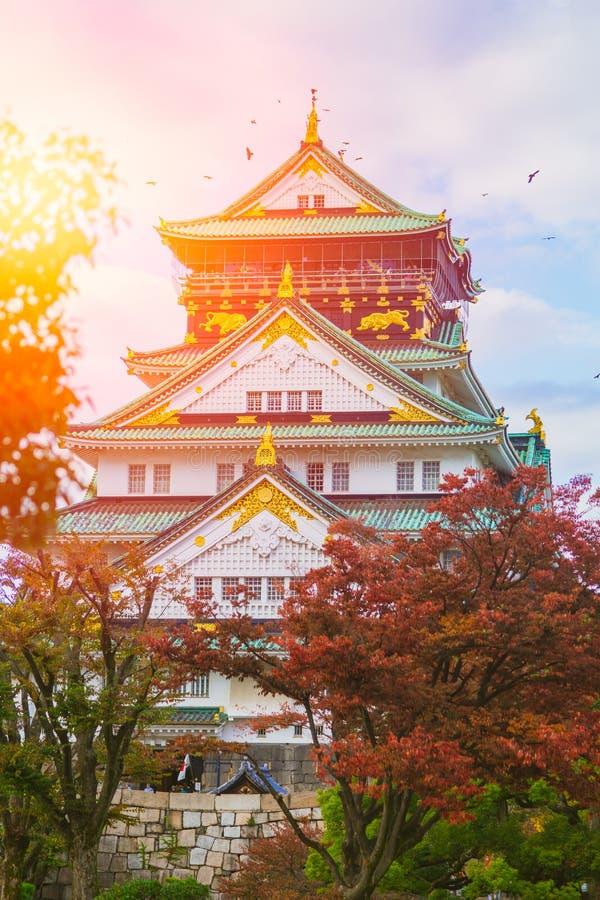 Osaka Castle in licht van de de hemelzon van de de Herfst het rode esdoorn blauwe stock afbeelding