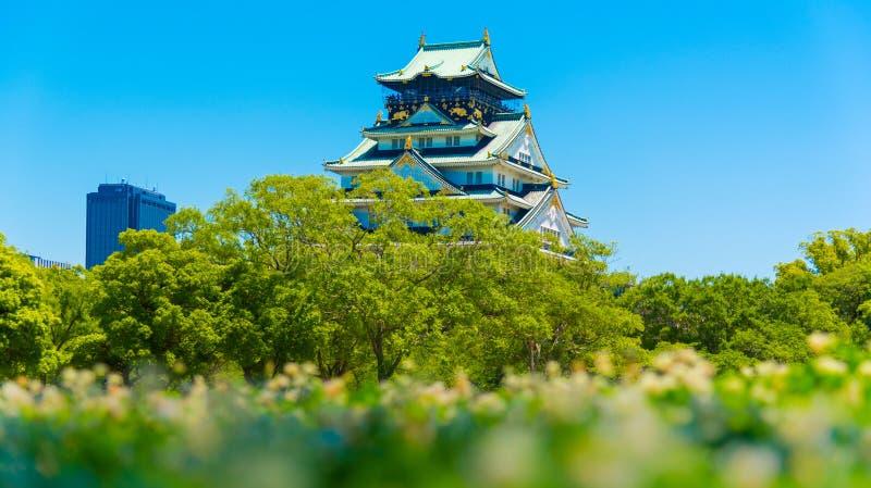 Osaka Castle met onduidelijk beeldbloem stock fotografie