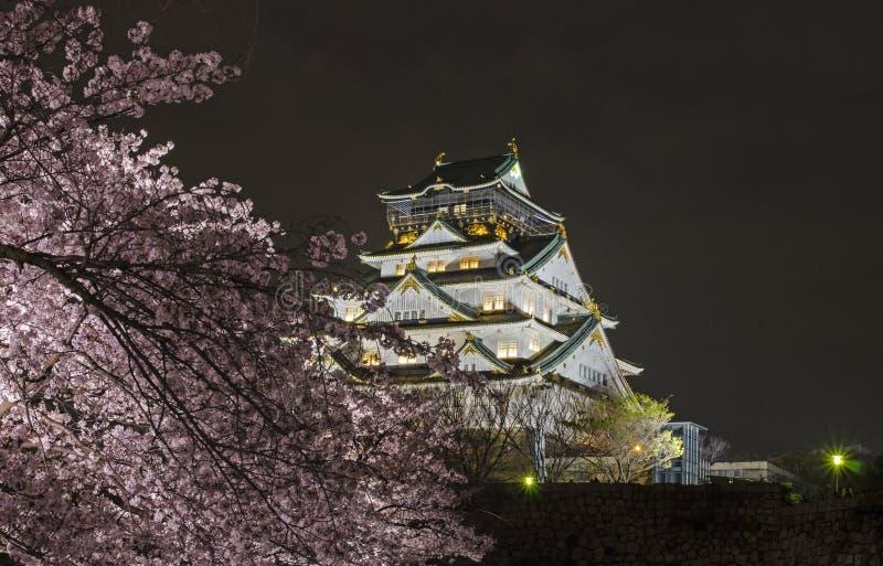 Osaka Castle Night View stock afbeeldingen