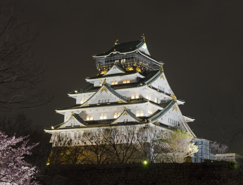 Osaka Castle Night View stock foto's