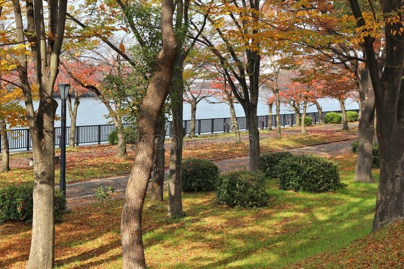 Osaka-Herbstpark lizenzfreie stockbilder